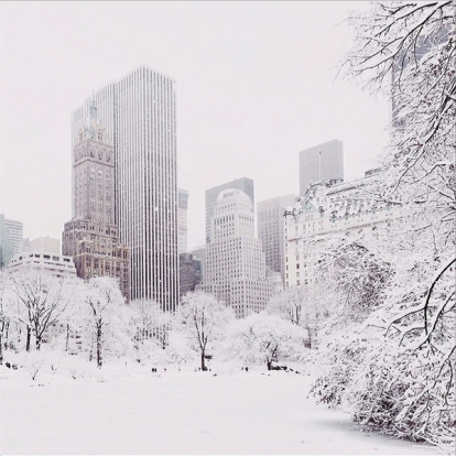 Winter Wonderland, Central Park, New York City